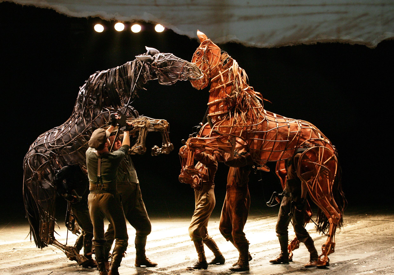 warhorse-regent-theatre-stoke-joey